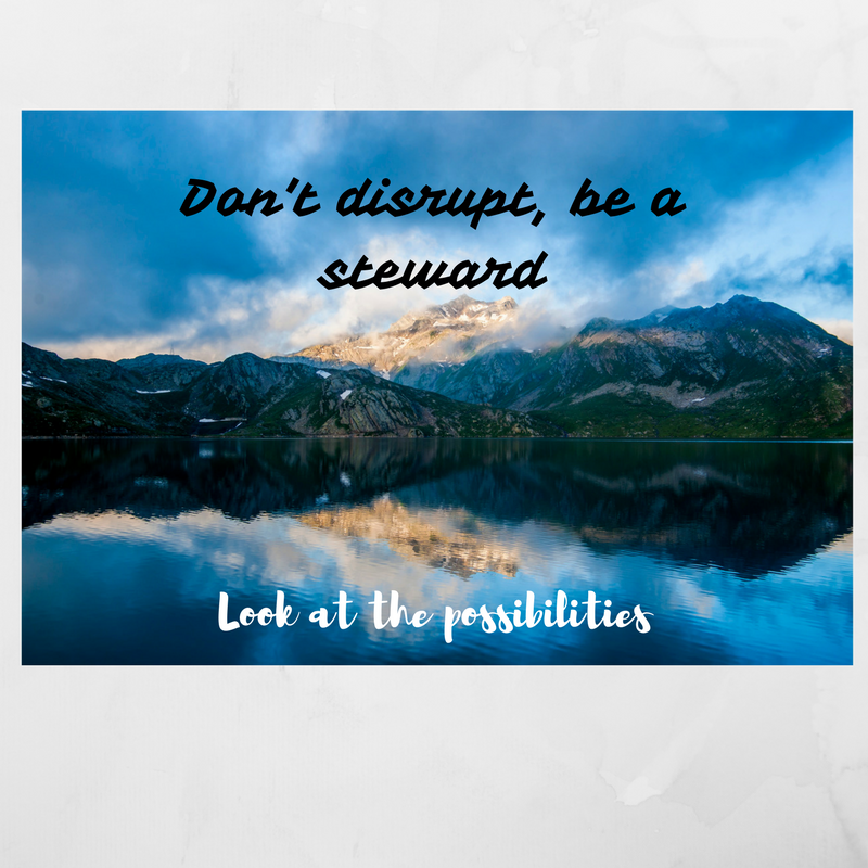 dont-disrupt-be-a-steward-of-technology